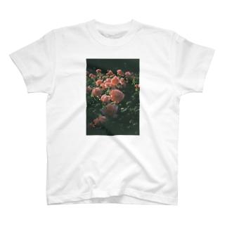 London Rose T-shirts