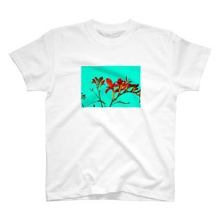 Crocosmia T-shirts