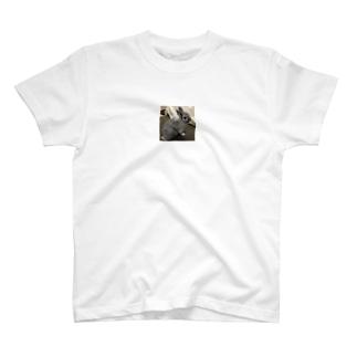うさぎのグリ T-shirts