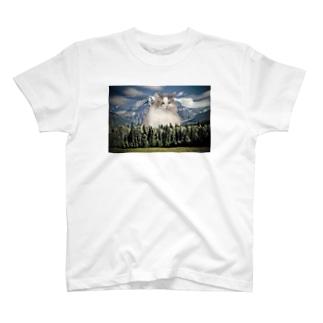 Mt.chipie near Everest T-shirts