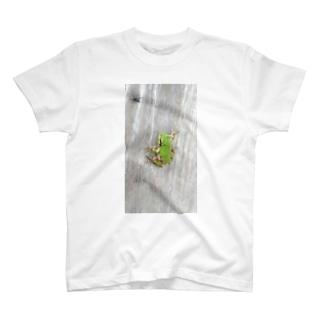 壁に貼りつくカエルさん T-shirts