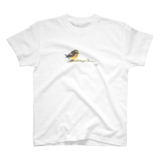 -KIBITAKI No.1- Bird call T-shirts
