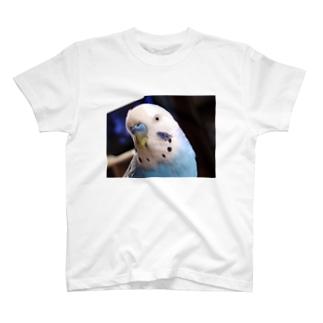 あおいちゃん T-shirts