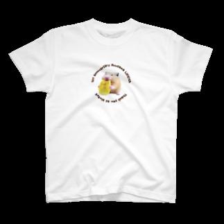 ぬーさまLIFE!chグッズショップの記念ロゴ入りバナナきんちゃんTシャツ T-shirts