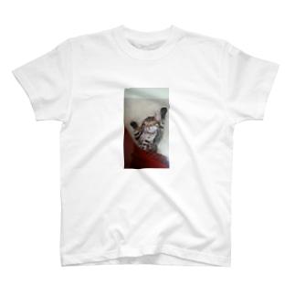 すやすやクゥさん T-shirts