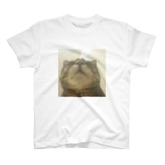 上向きクゥさん T-shirts
