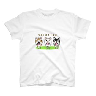 柴犬トリオ T-shirts
