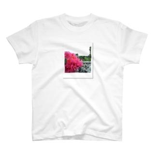 ハイビスカス Photoby cheki T-shirts