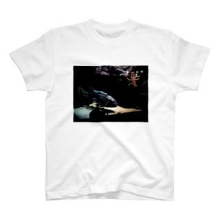 深海。 T-shirts