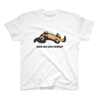 ダックス2ブラックタン T-shirts
