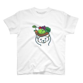 菜食主義な柴犬(白柴) Tシャツ