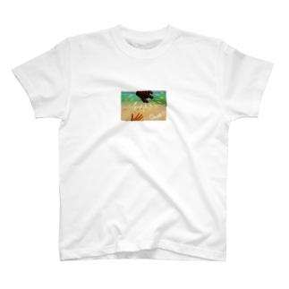 ちゃっかり竹富島、オギコの夏Tシャツ T-shirts