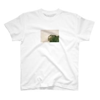 ひたむき T-shirts