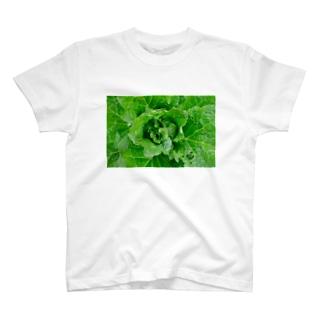 greens T-shirts