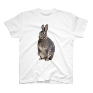 スタンディングうさちゃん T-shirts