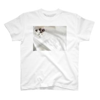 ひなたぼっこ T-shirts