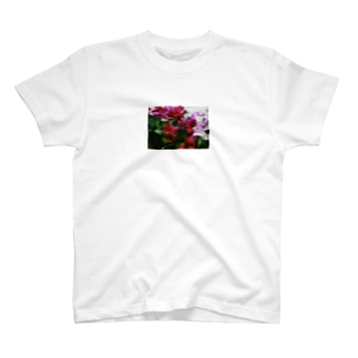 think T-shirts