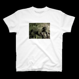 ヒカリタケウチの金玉 T-shirts