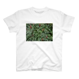 植物 T-shirts