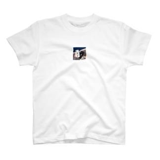 IPHONE XSケース CHANEL T-shirts