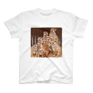 ミーアキャットまみれ♡ T-shirts