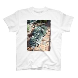 立派な吉祥天 T-shirts