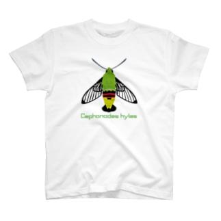 オオスカシバ T-Shirt