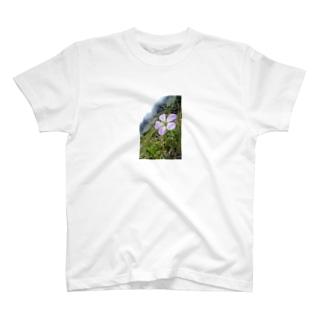 高山植物 T-shirts