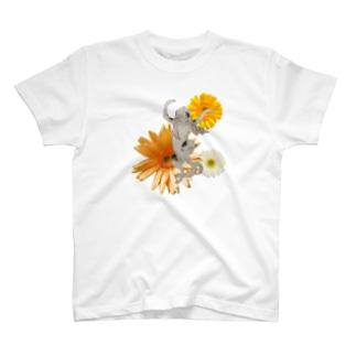おどるねことがーべら T-shirts