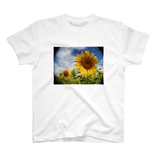 夏の花 向日葵 T-shirts