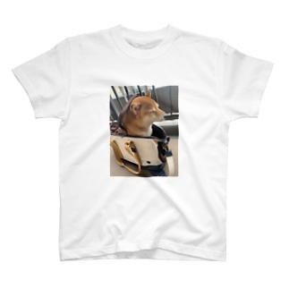 048style、ハナちゃん T-shirts