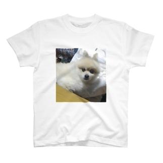 少し眠いらんちゃん T-shirts