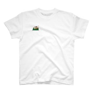 魔法の絨毯にのるグリフォン T-shirts