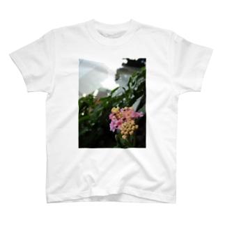 咲き始めの紫陽花 T-shirts