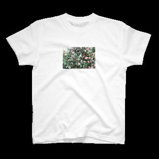 かわいいですよねの雰囲気のあるお花フォト T-shirts