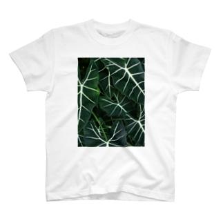 南国のはっぱ 編 T-shirts
