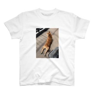 ハナちゃんのダブルチキン T-Shirt