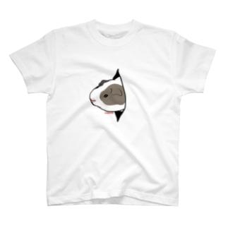 穴からモルモット T-shirts