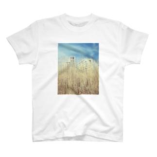 20180326 T-shirts