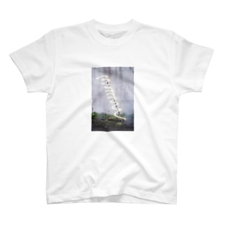 20170820 T-shirts