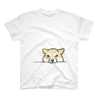 おねだり柴犬 T-shirts