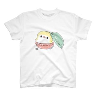 マカロンと ことりTシャツ T-shirts