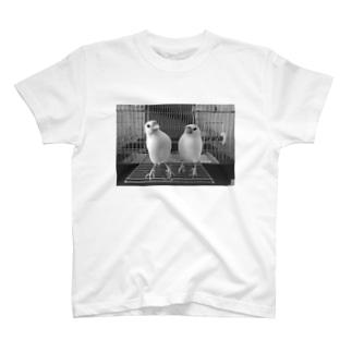 ブンズ T-shirts