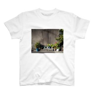 日の当たる植木鉢 T-shirts
