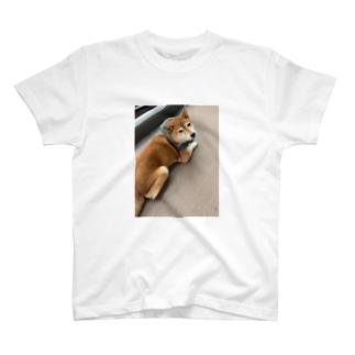 048styleハナちゃん‼️泥棒style T-Shirt