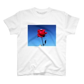 一輪の薔薇 T-shirts