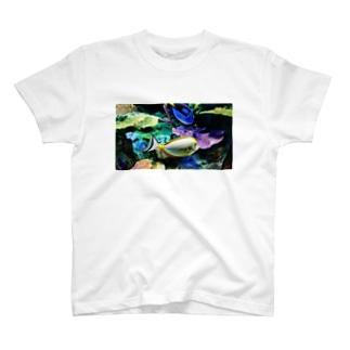 🐬水族館🐠 T-shirts
