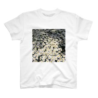 集合体恐怖症の中でいちばんおしゃれなやつ T-shirts