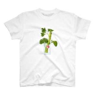 セロリ・パセリ・ラディッシュ T-shirts