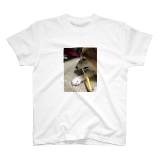 NORiの048style、はなちゃんの歯みがき T-shirts